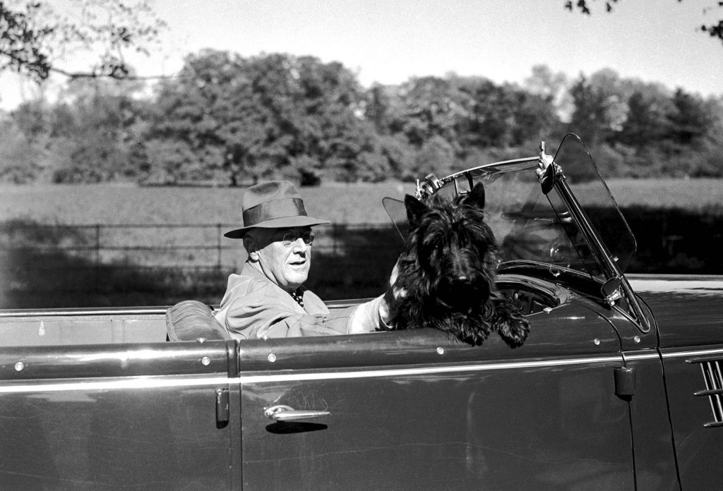 President Roosevelt with His Dog Fala (Copyright Bettmann/Corbis / AP Images)