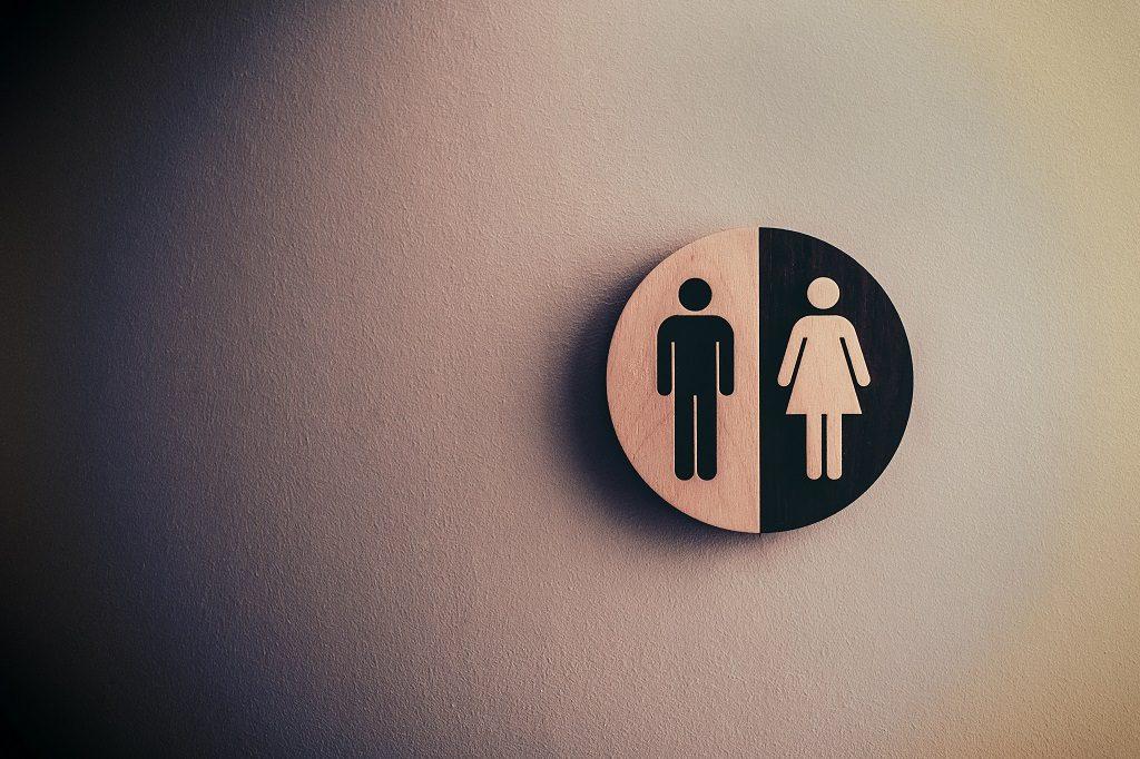DarwinEssayNet Post Nature Essay Writing Issues Gender, Race, Politics